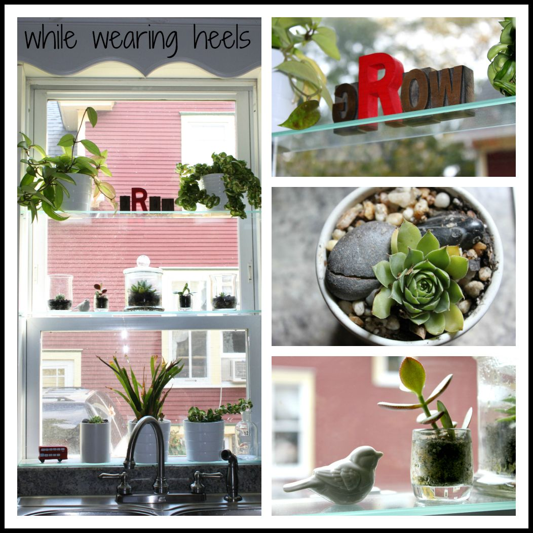 Make your own DIY Greenhouse Window, add some glass shelves, create ...