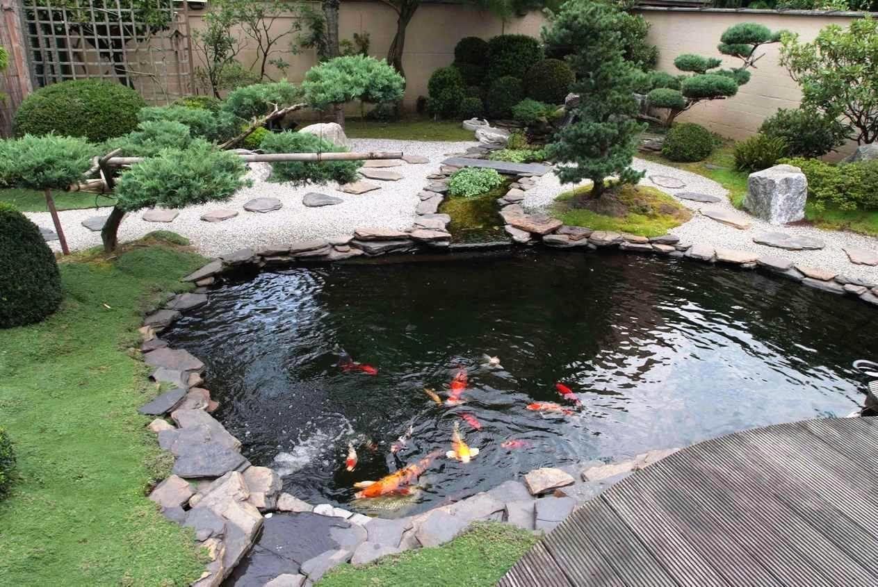 15 Awe Inspiring Garden Ponds That You