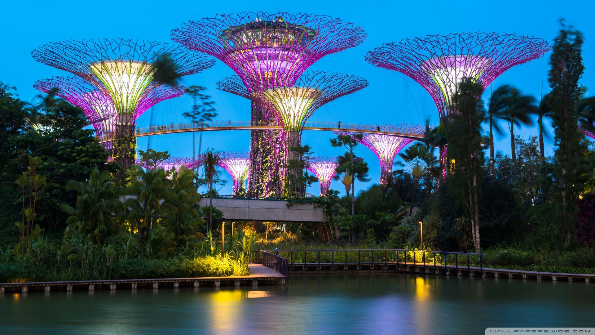 Supertree grove gardens by the bay singapore HD wallpapers