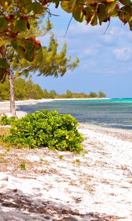 The 24 Best Island Beaches In The World Beach Trip Beaches In