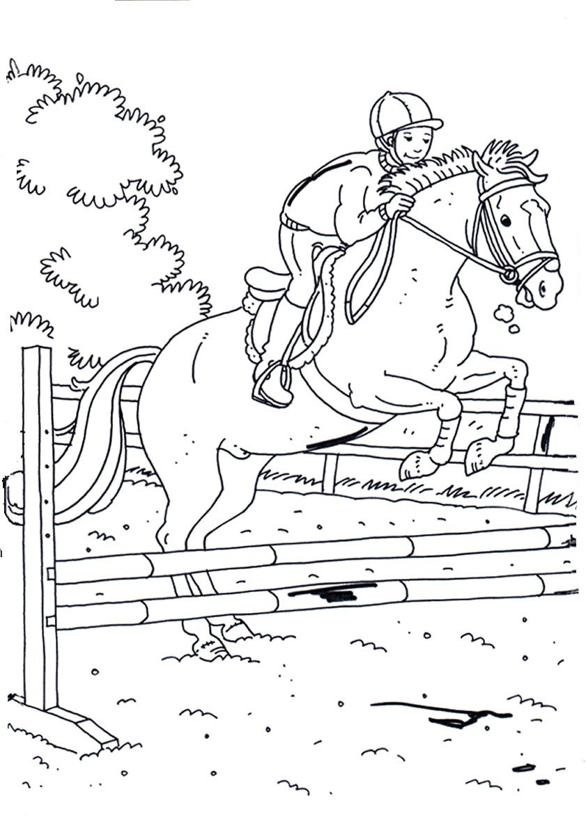 horses 19 coloring pages horses colouring pinterest