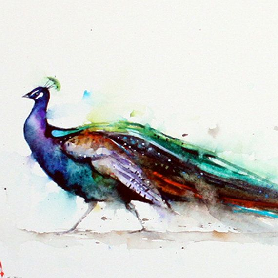 PEACOCK Colorful Print by Dean Crouser
