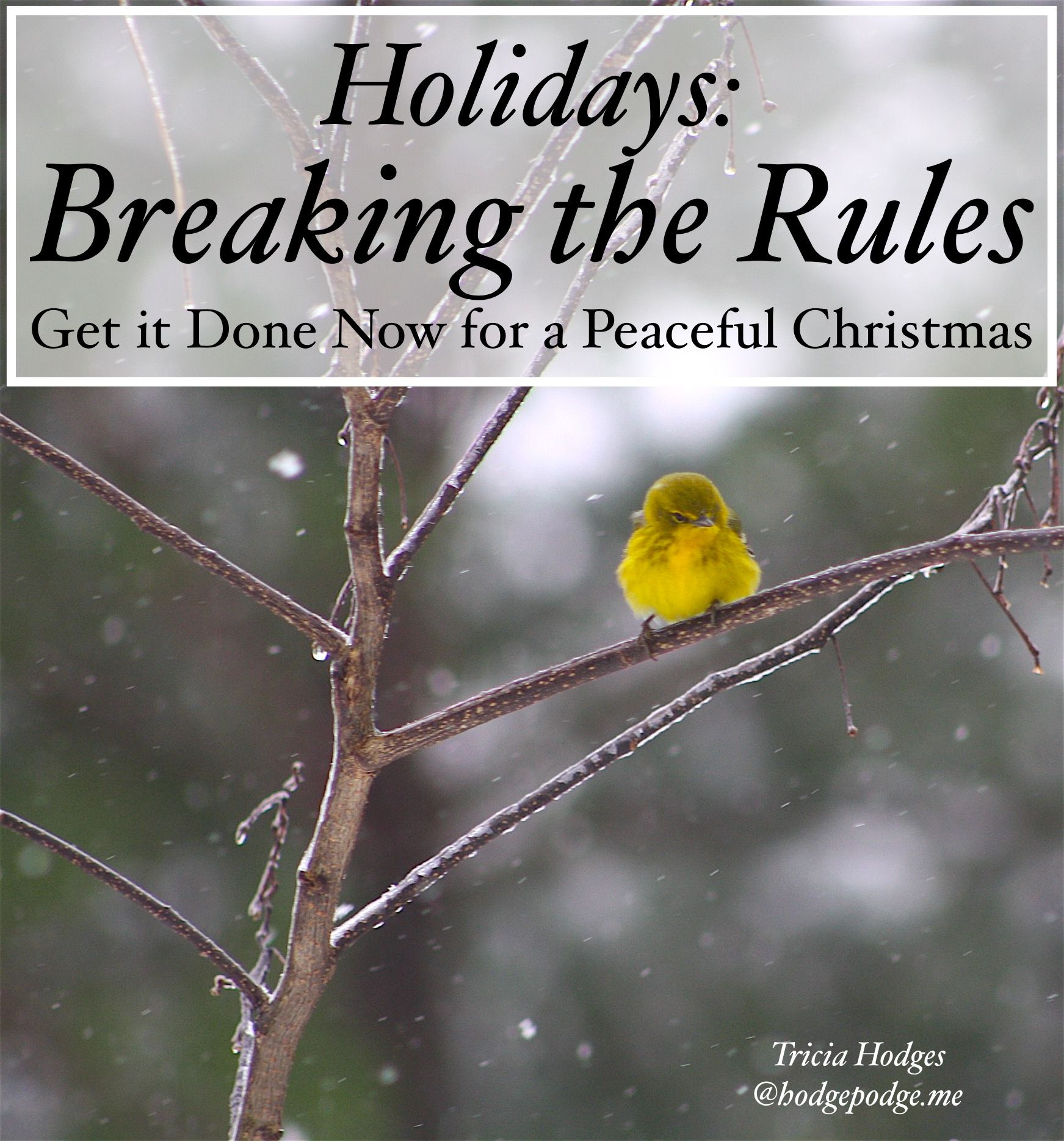 Holidays And Breaking The Rules