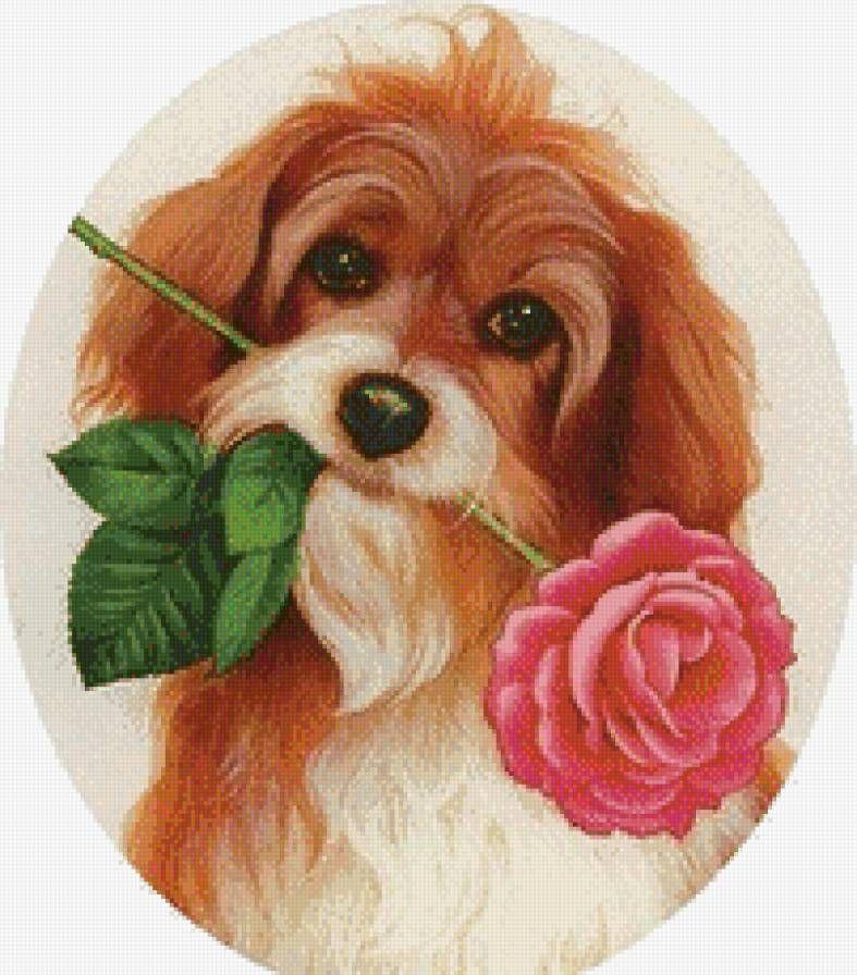 Открытка собачка с цветком