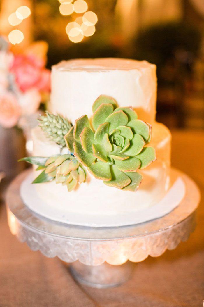 Succulent cake   shower ideas   Pinterest   Wedding and Weddings