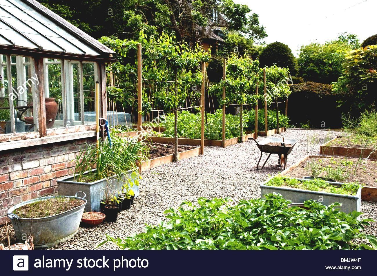 Die Besten Gemuse Garten Design Ideen Fur Das Grune Wohnzimmer Morflora Gartendeko Garten Design Cottage Garten Kleine Hinterhofgarten