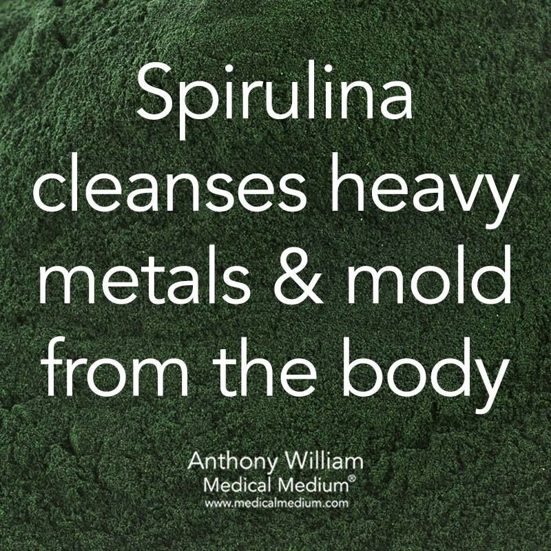 Spirulina cleanses heavy metals & mold from the body
