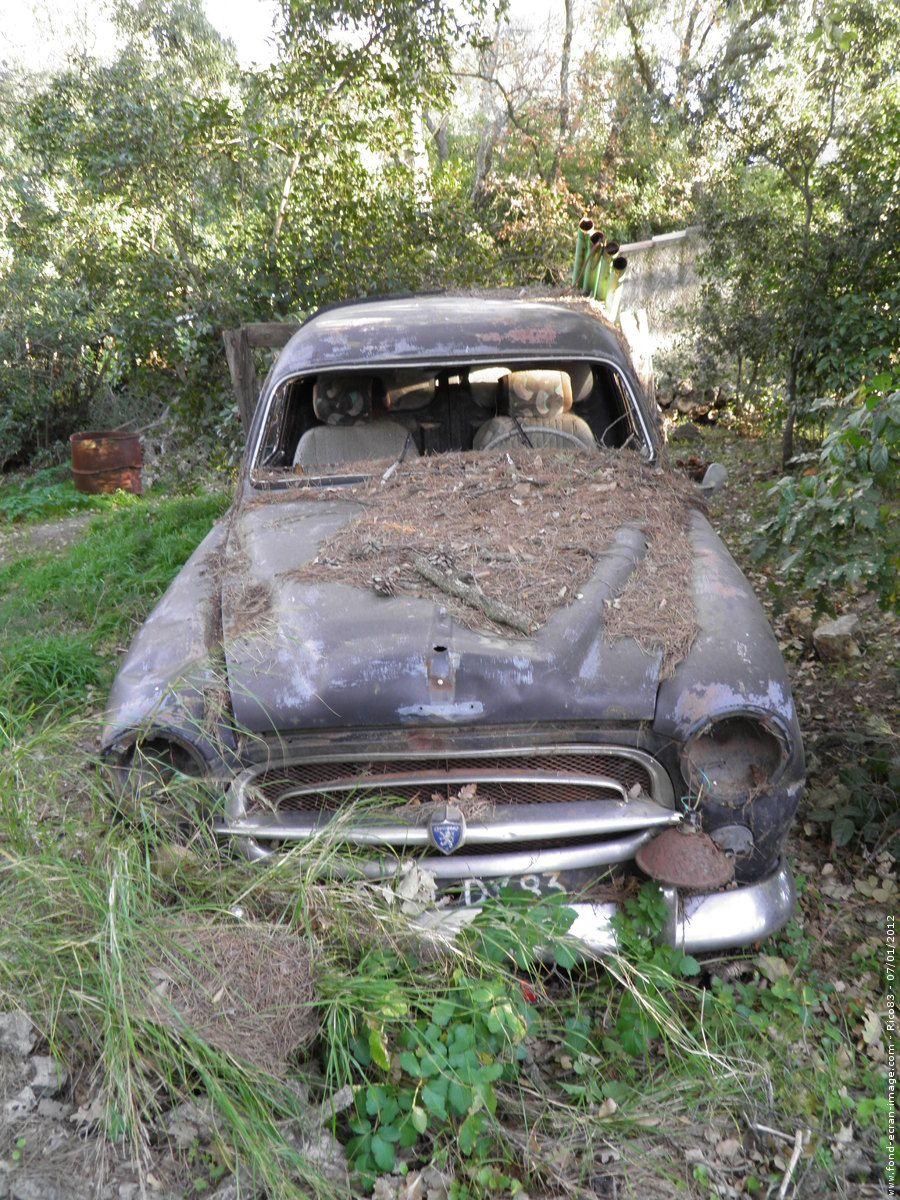 peugeot 403 rust in peace pinterest abandonn voitures et voitures abandonn es. Black Bedroom Furniture Sets. Home Design Ideas