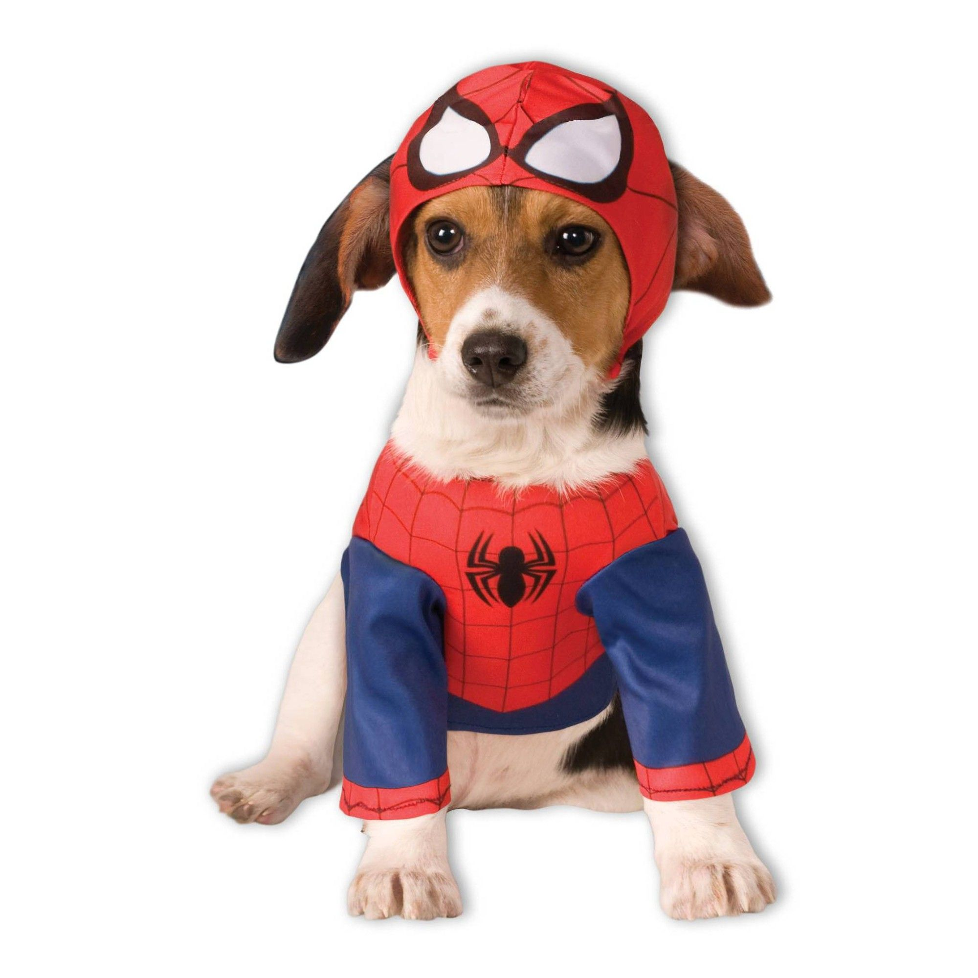 Halloween Rubies Spider Man Dog Costume Xl Men S Multicolored