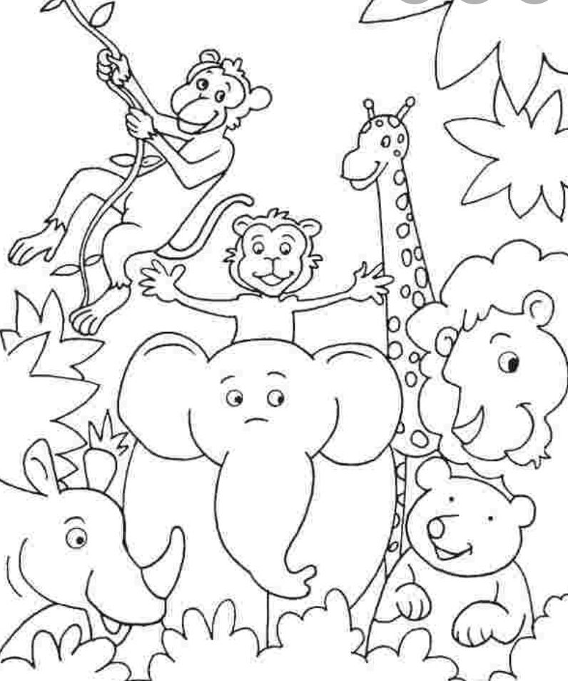 Pin By Valentina Bikova On Aminals In 2020 Zoo Animal Coloring Pages Jungle Coloring Pages Zoo Coloring Pages