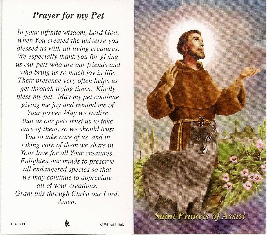 Saint Francis Of Assisi Prayer Prayers To St Francis Of