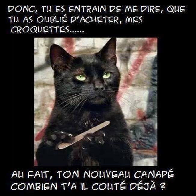 Top PARTAGE OF DÉFENDRE LES ANIMAUX ET PROTÉGER LA NATURE..CHANTAGE  XI57