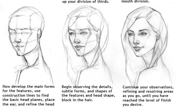 How To Draw The Female Head Drawings Art Girl Drawing