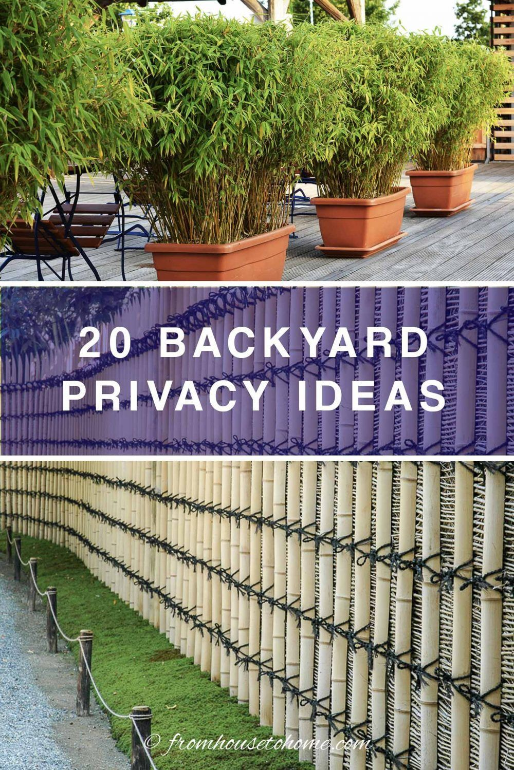 20 Backyard Privacy Ideas For Screening Neighbours Out Backyard Privacy Garden Privacy Covered Garden