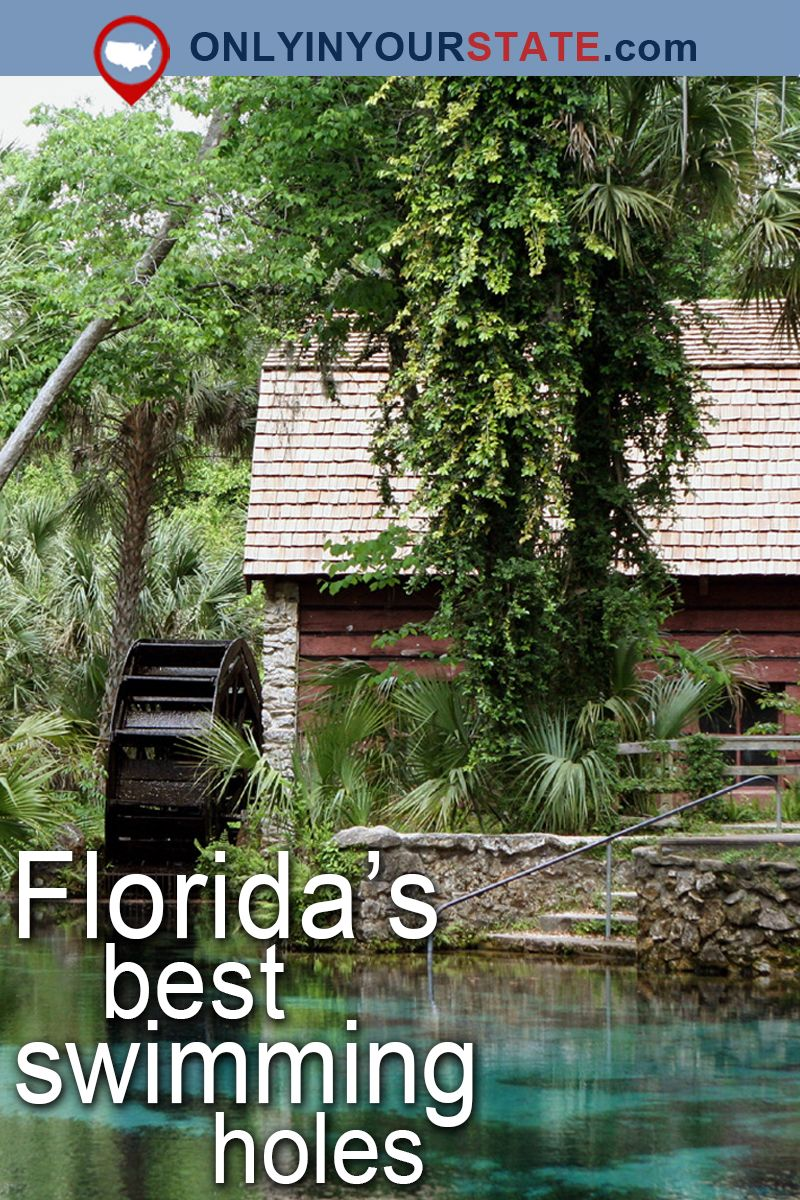 15 Florida Swimming Holes That Are Ideal For A Summer Adventure Florida Springs Swimming Holes Florida Attractions