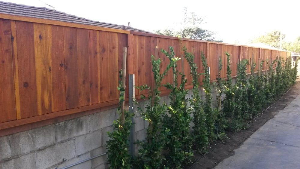 Image Result For Cinder Block And Wood Fence Wood Fence Wood Privacy Fence Concrete Block Walls