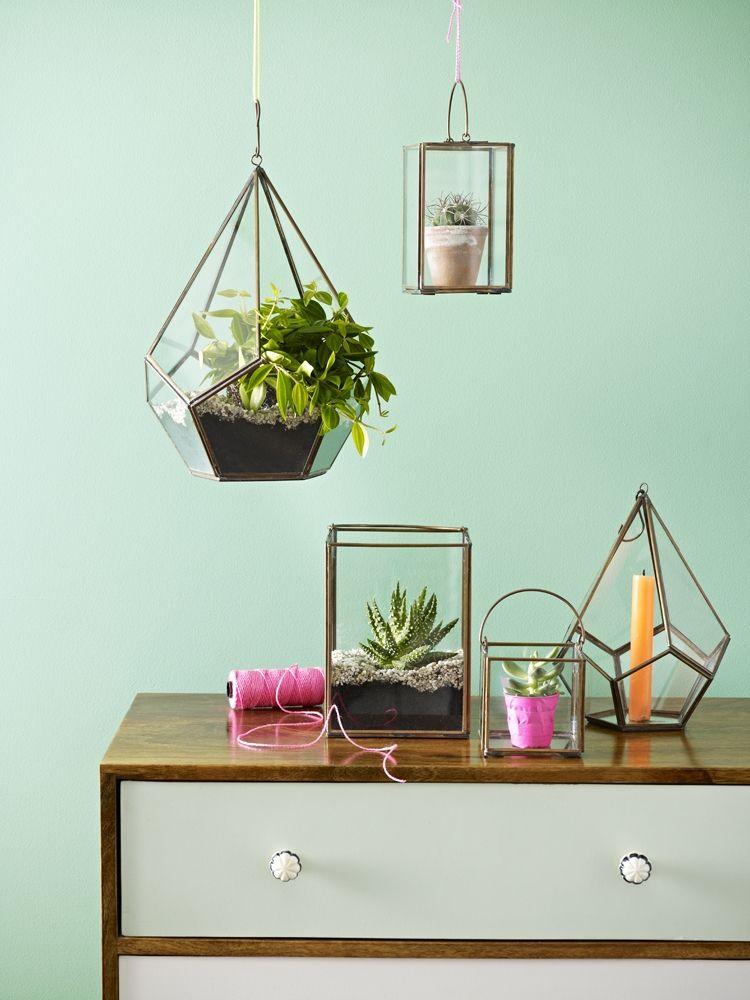 Copper and Glass Terrarium | Copper | Accents | Homeware | Oliver ...
