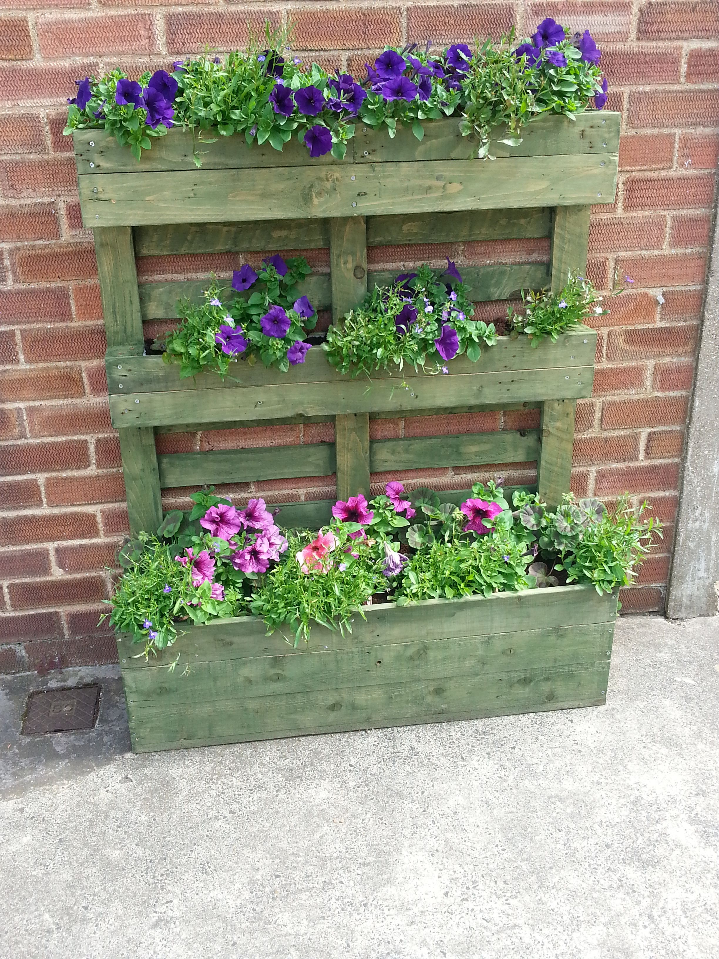 Upright pallet planter stained green planting pallets for Garden sectioning ideas