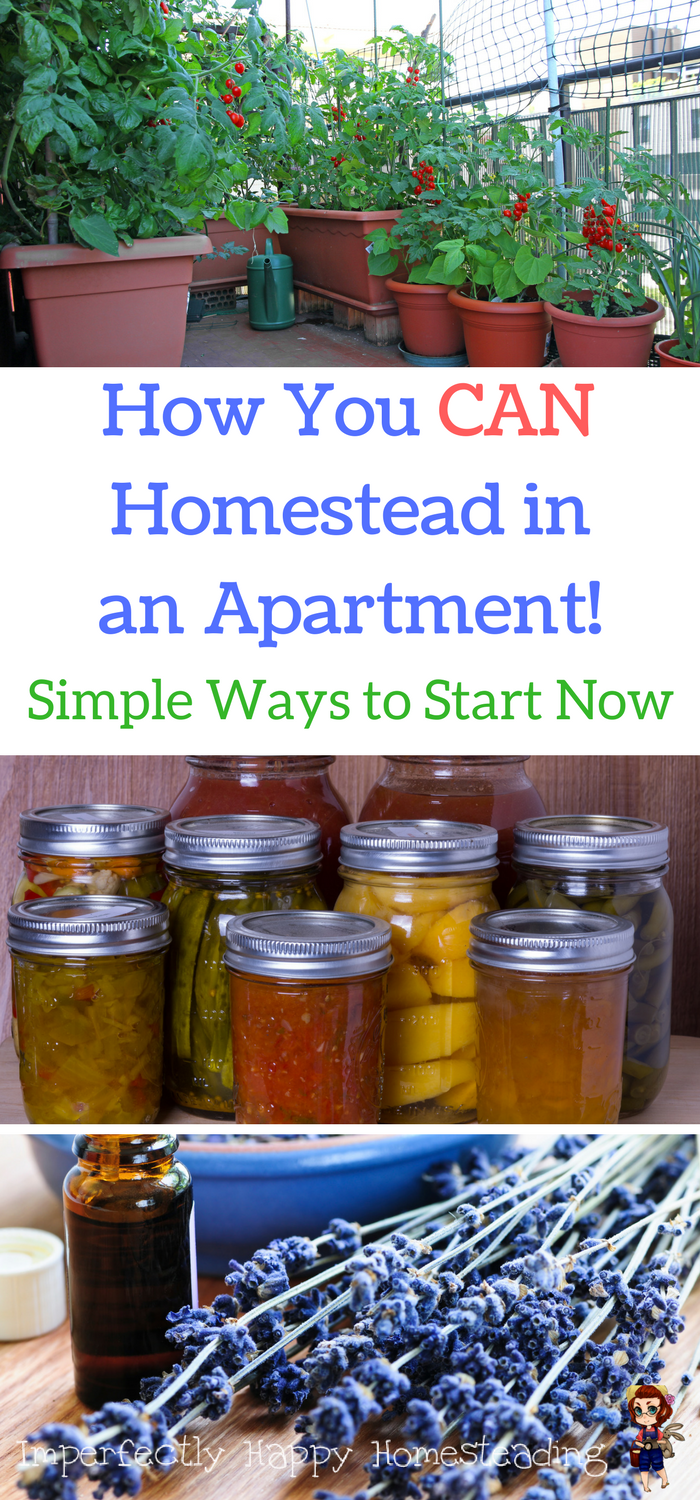 Simple Ways You Can Be An Apartment Homesteader Now Starting Homesteading Where Are Don T Wait For A Farm