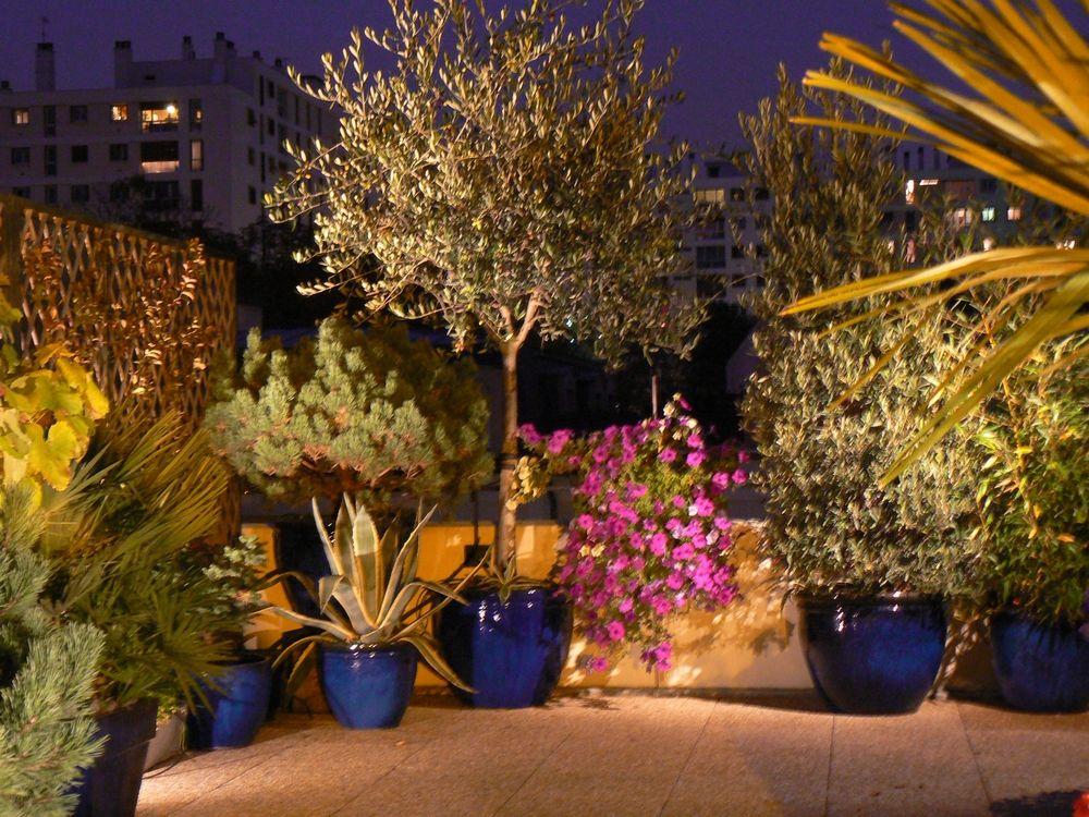 diseño de plantas para terrazas   decoración   Pinterest   Diseños ...