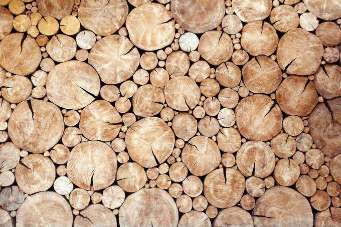 Pile Of Wood Logs Wood Pile Wood Logs Wood