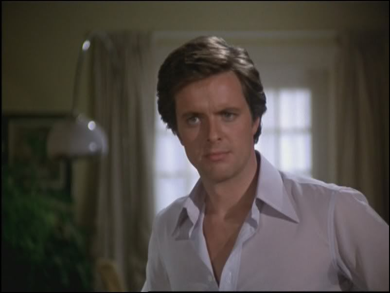 ian ogilvy return of the saint