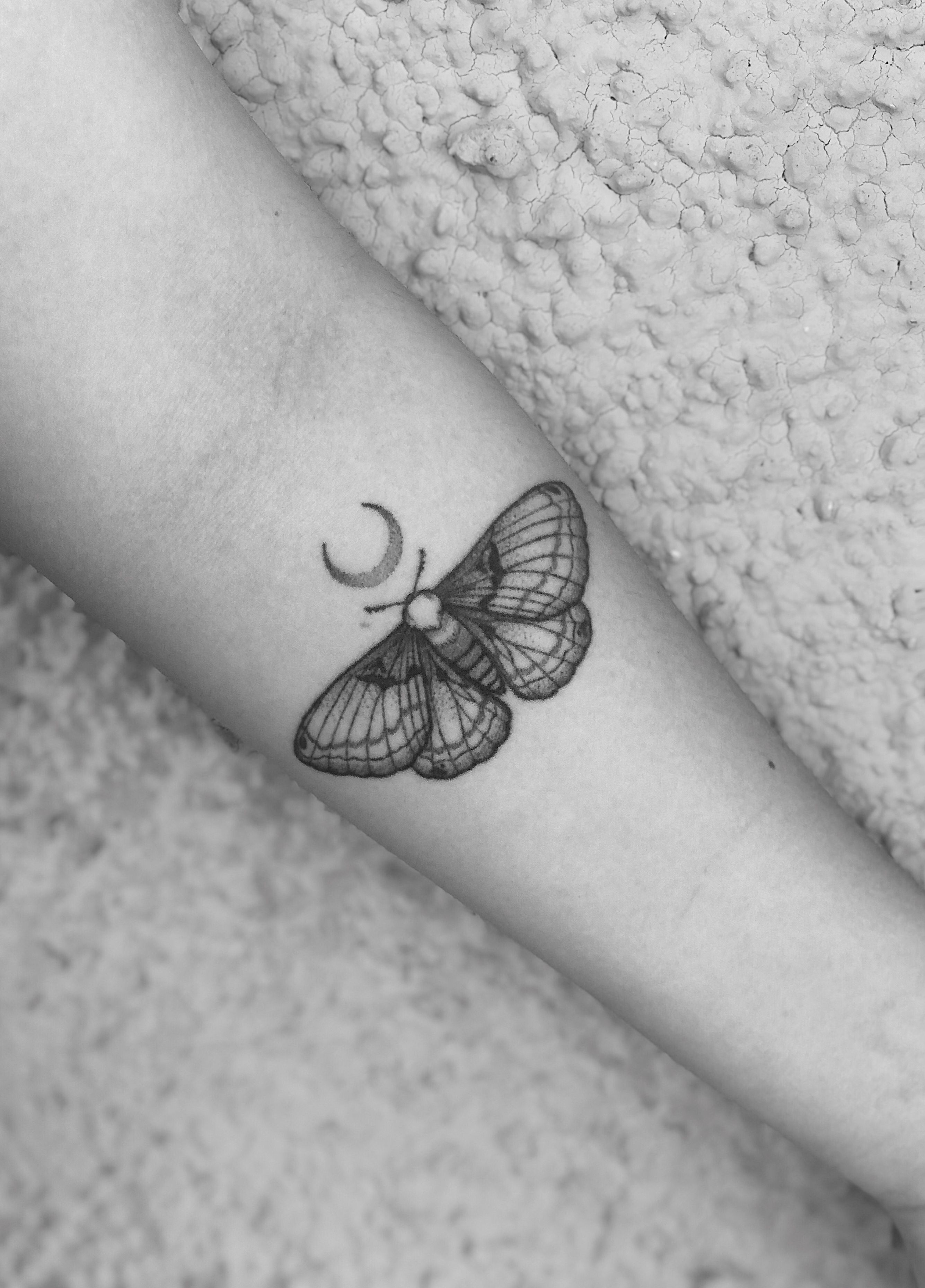My Little Moth Moth Tattoo Moth Tattoo Design Sleeve Tattoos For Women