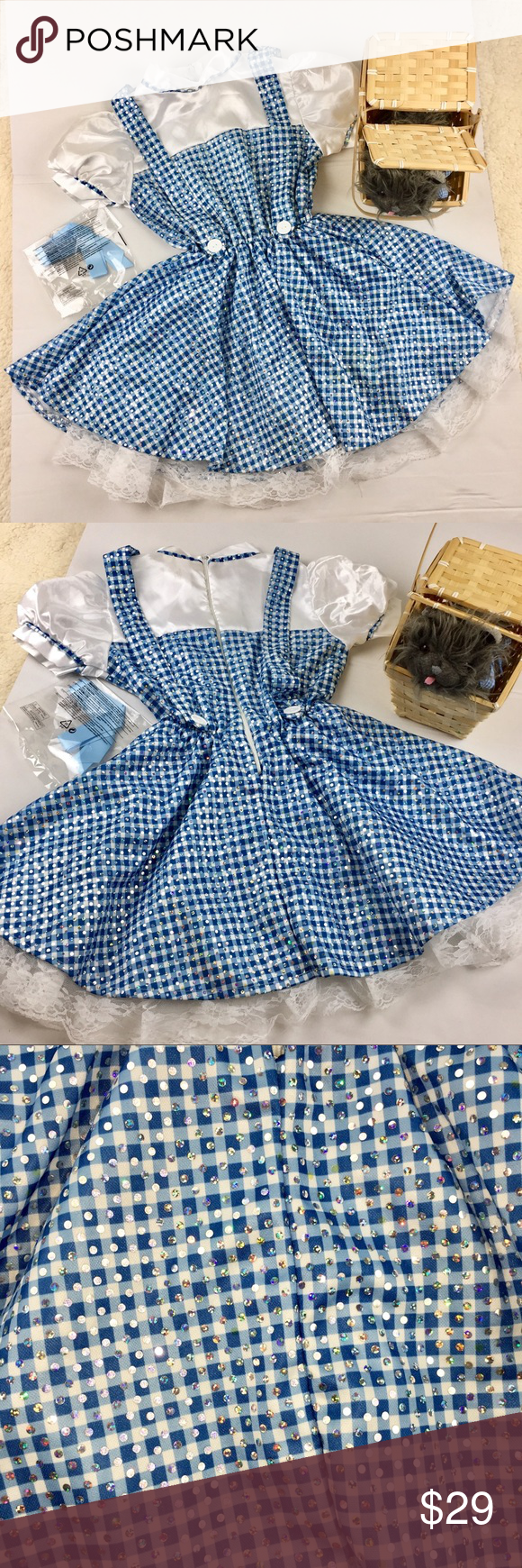 Dorothy wizard of oz medium size years old costumes