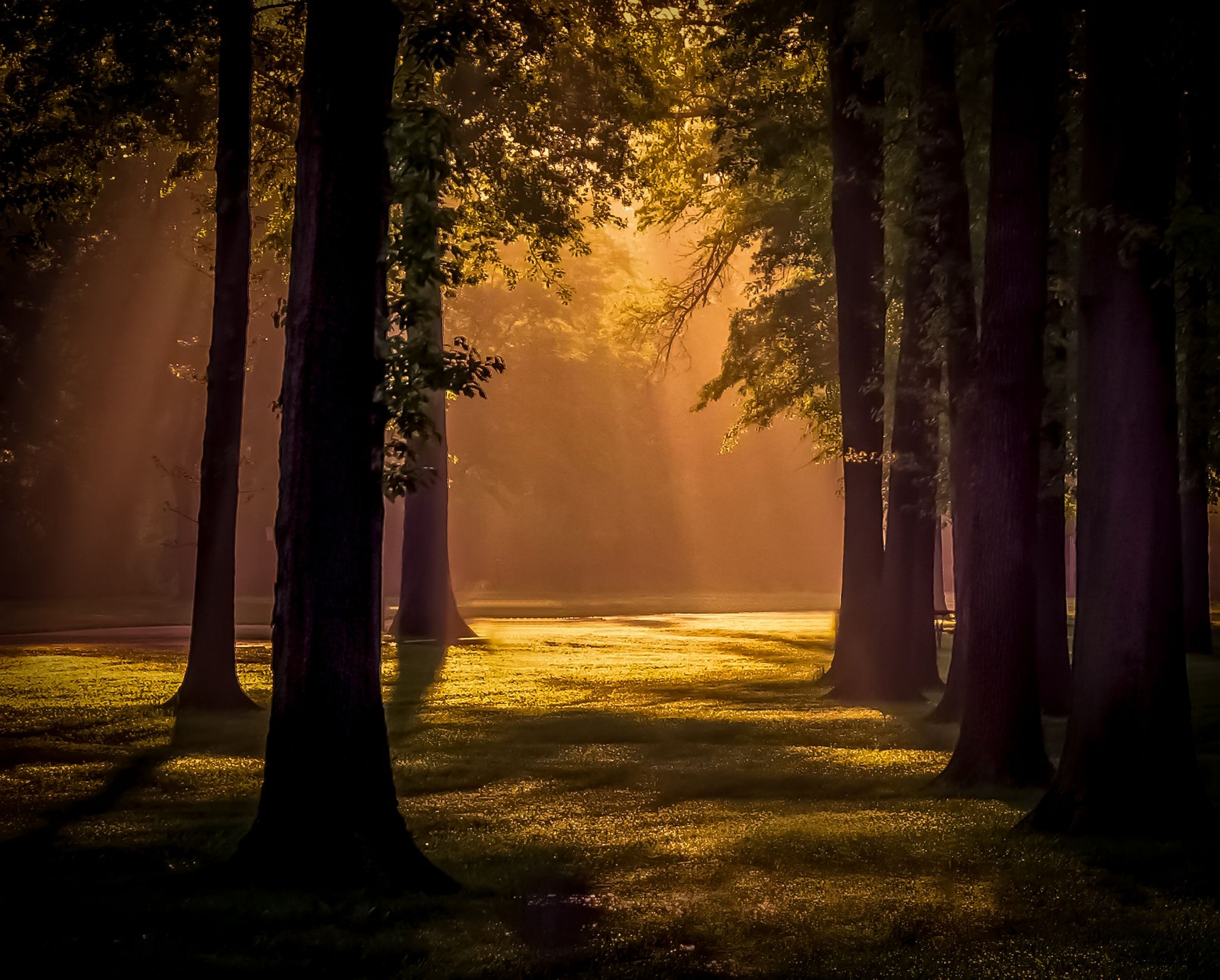 Photograph Morning Glow by Gil Druen on 500px