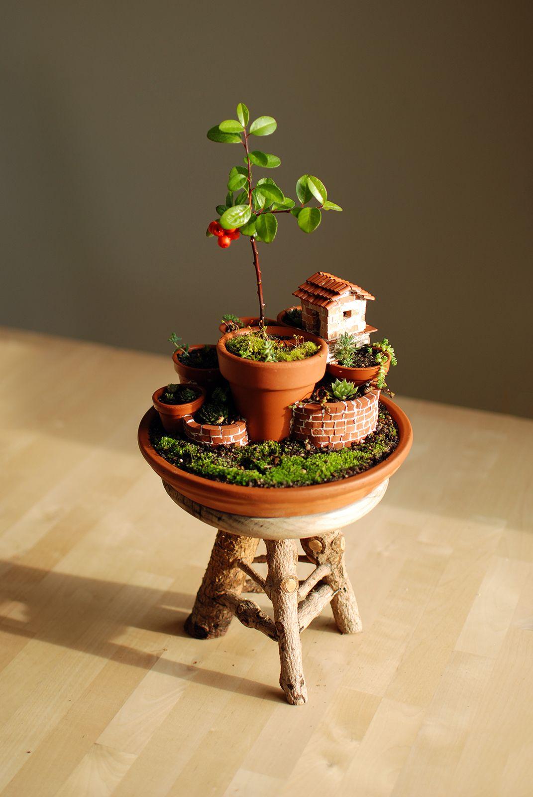 Monte de macetas con caba a del jardinero pots garden for Macetas miniatura
