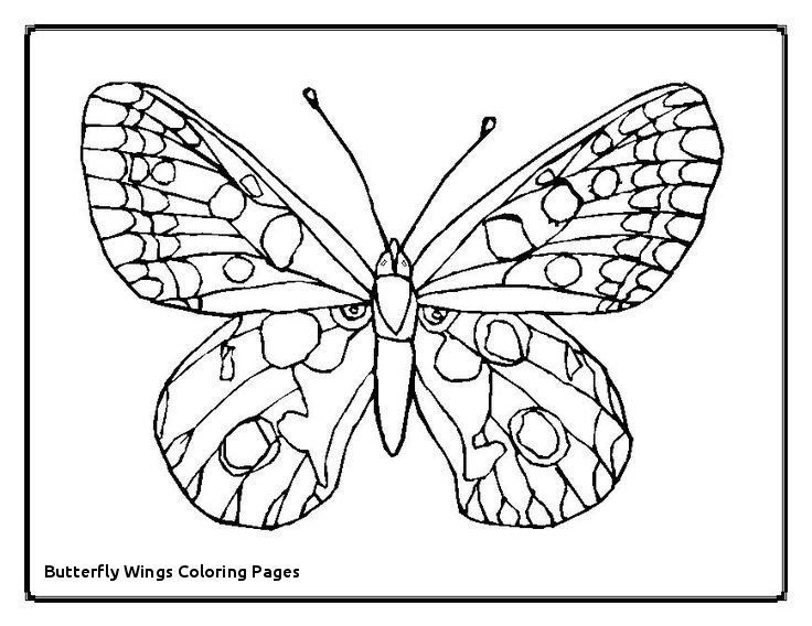 Butterfly Wings Coloring Pages Butterfly Coloring Books