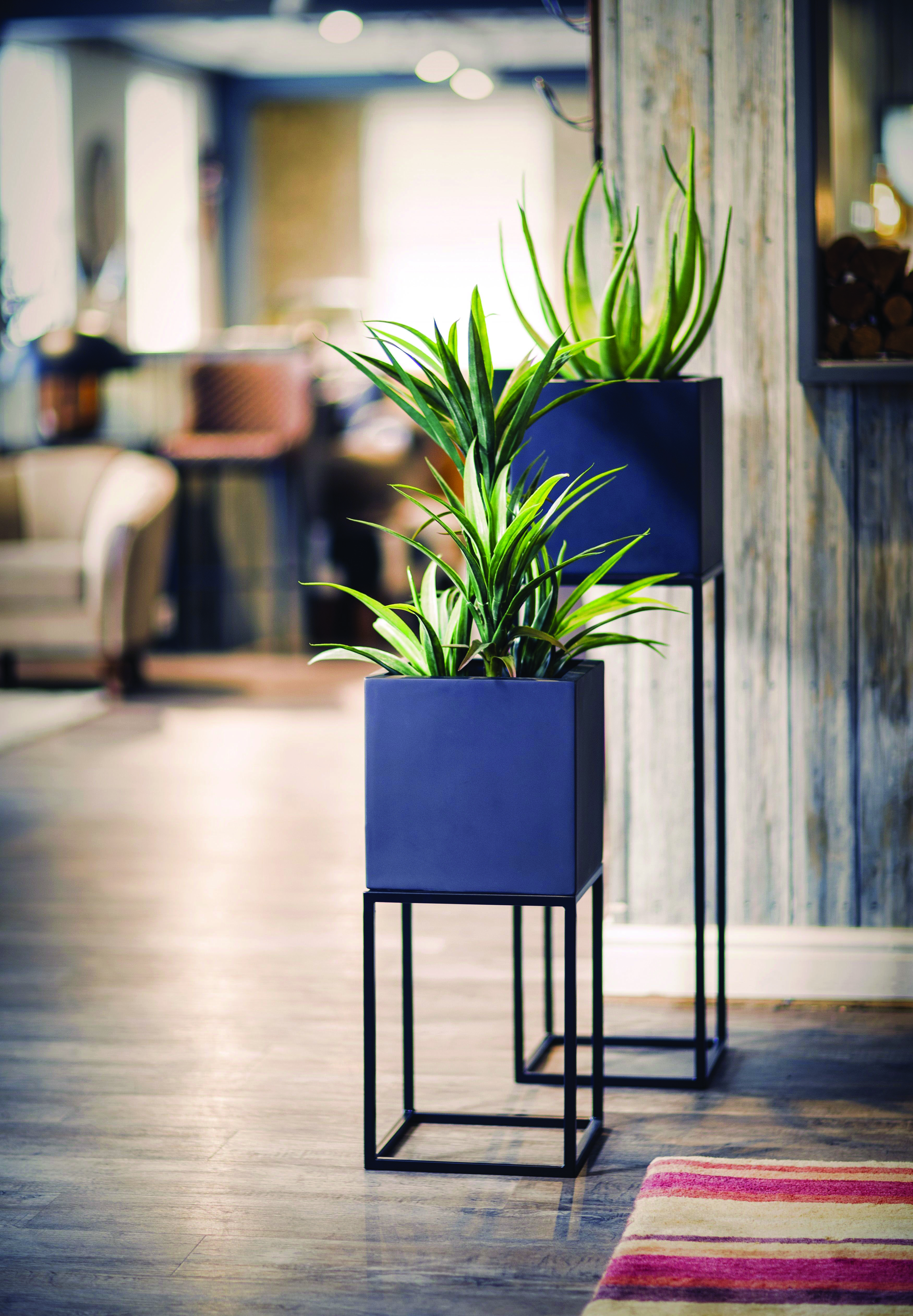 Superior Indoor Plant Stands Walmart One And Only Homelikeart Com