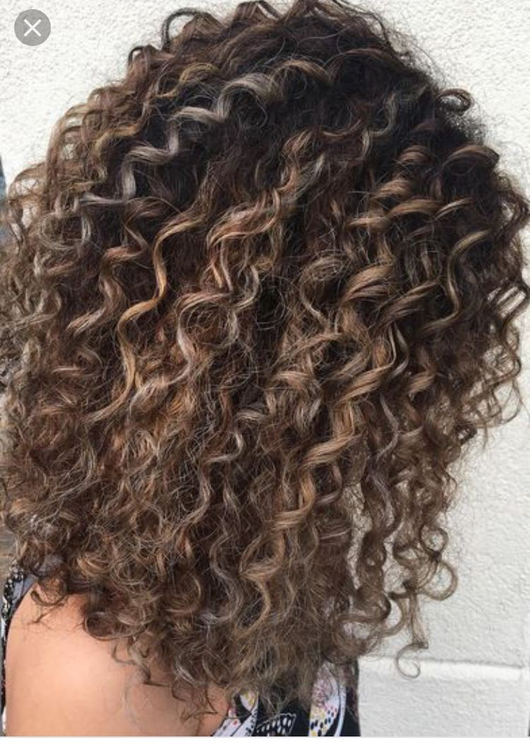 Pin by DaniWaffles on All Things Curly Hair