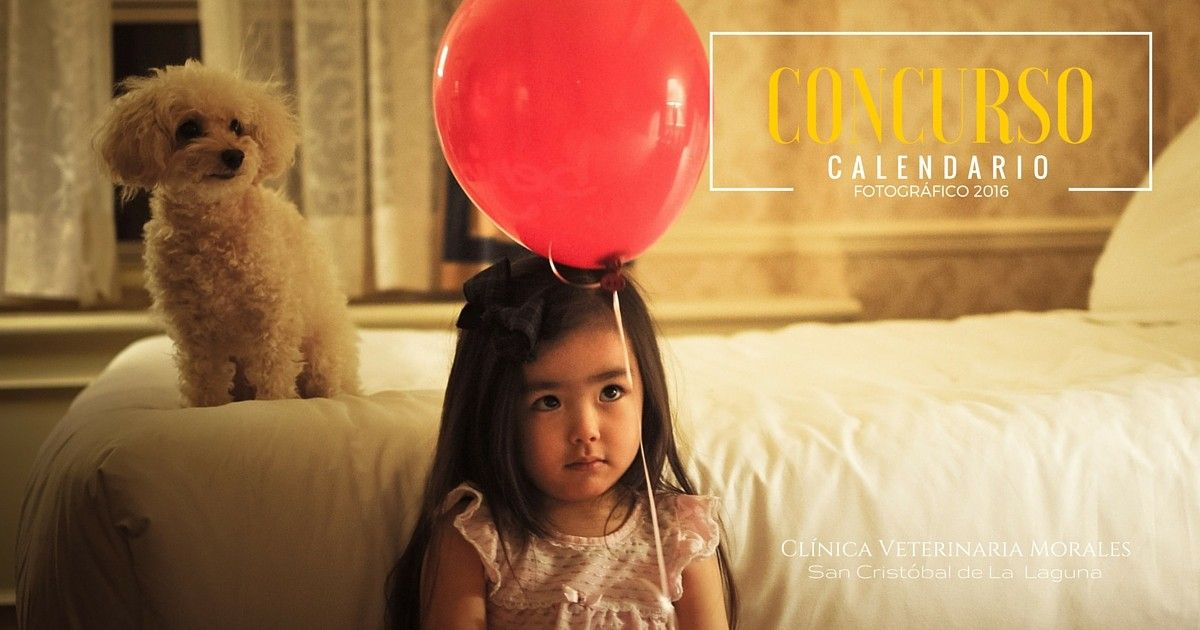 Concurso Fotográfico Calendario 2016