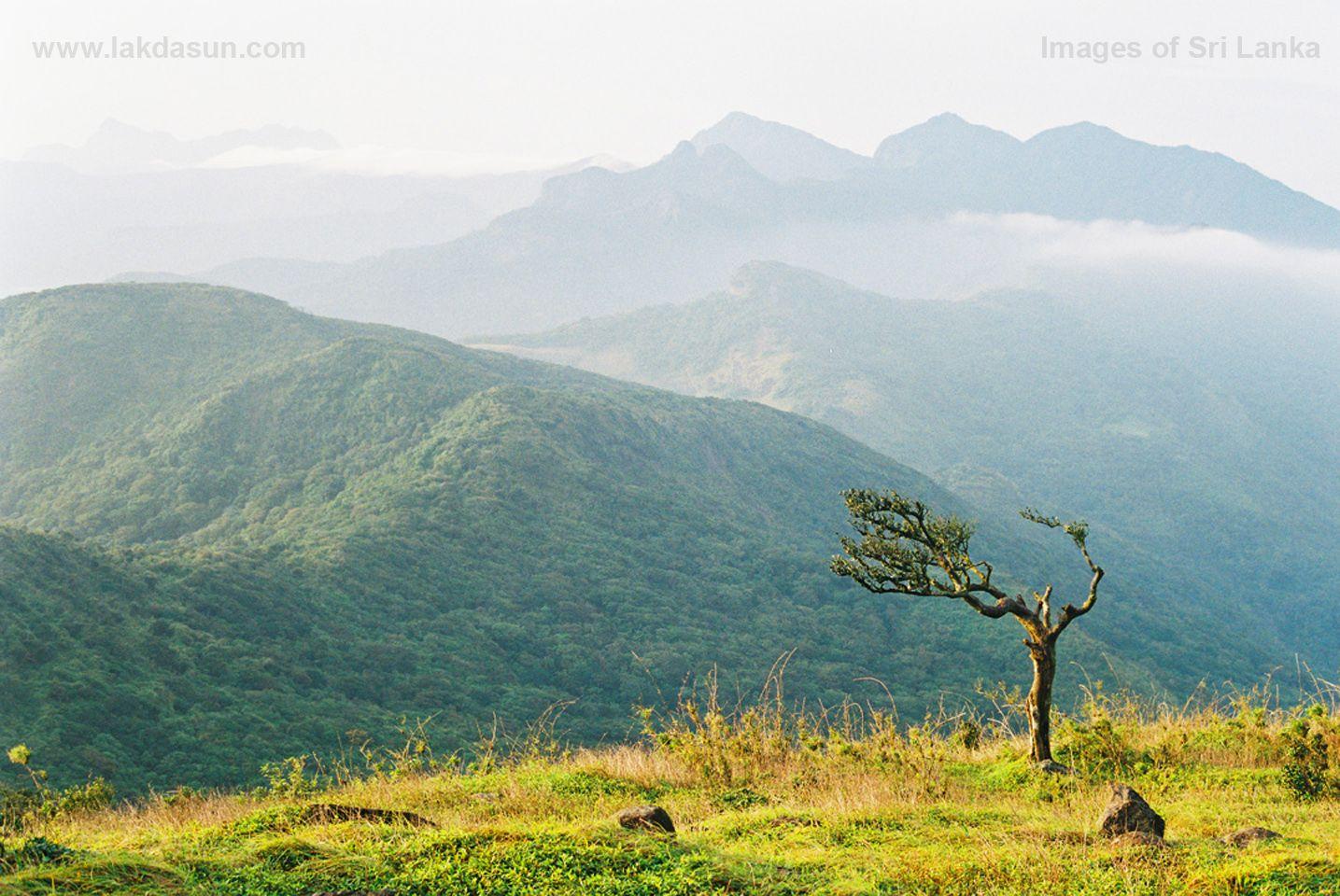 Beautiful Places In Sri Lanka Google Search Beauty Of Sri Lanka Pinterest Sri Lanka