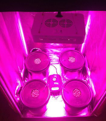 4 Site Hydroponic Grow Room Complete Grow Tent 300w Led Grow Light With Ir Grow Tent Led Grow Lights Grow Room