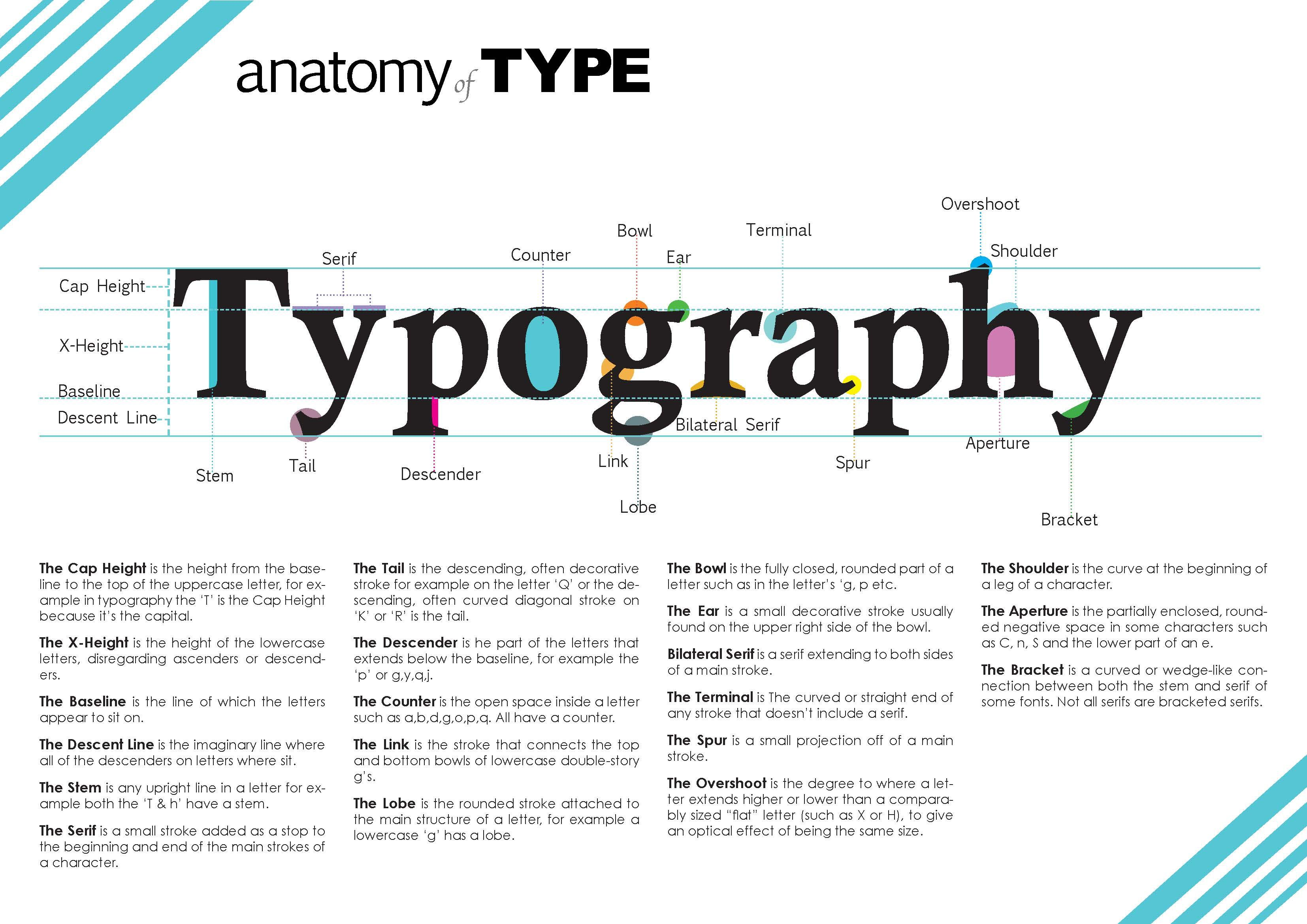 This Anatomy of Type page was made to display the anatomy of ...