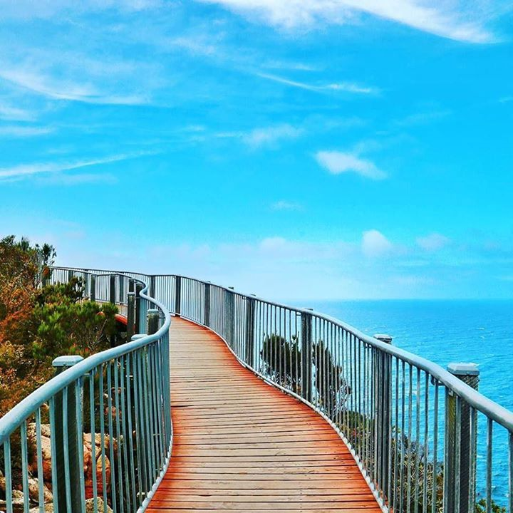 "Hotels-live.com/cartes-virtuelles #MGWV #F4F #RT ""Get lost with me where the sky meets the sea..."" #quote #sky #walk #Tasmania #Australia #seeaustralia ___ #travellersplanetaustralia by travellersplanet https://www.instagram.com/p/BBKtHHHqLGU/"