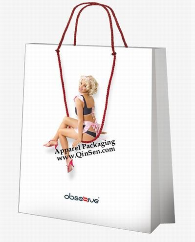 Fancy Design Idea for Lingerie Shopping Bag Use your Lingerie ...