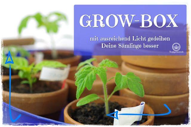 Anzuchtkasten Growbox Selber Bauen Mit Bildern Garten Und Outdoor