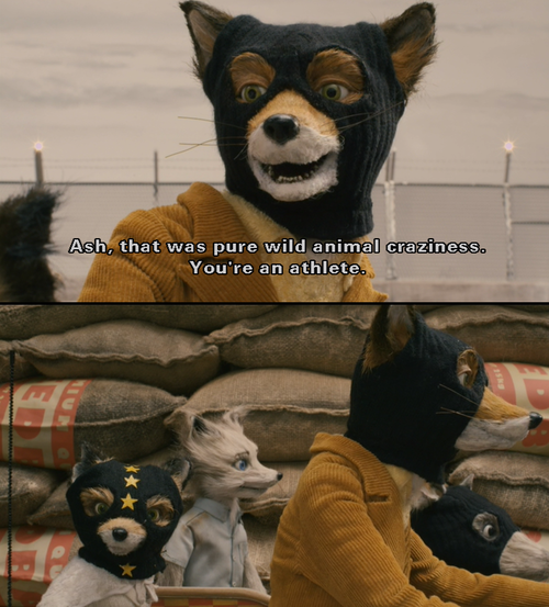 One Day One Movie Fantastic Mr Fox Fantastic Mr Fox Quotes Wes Anderson Movies