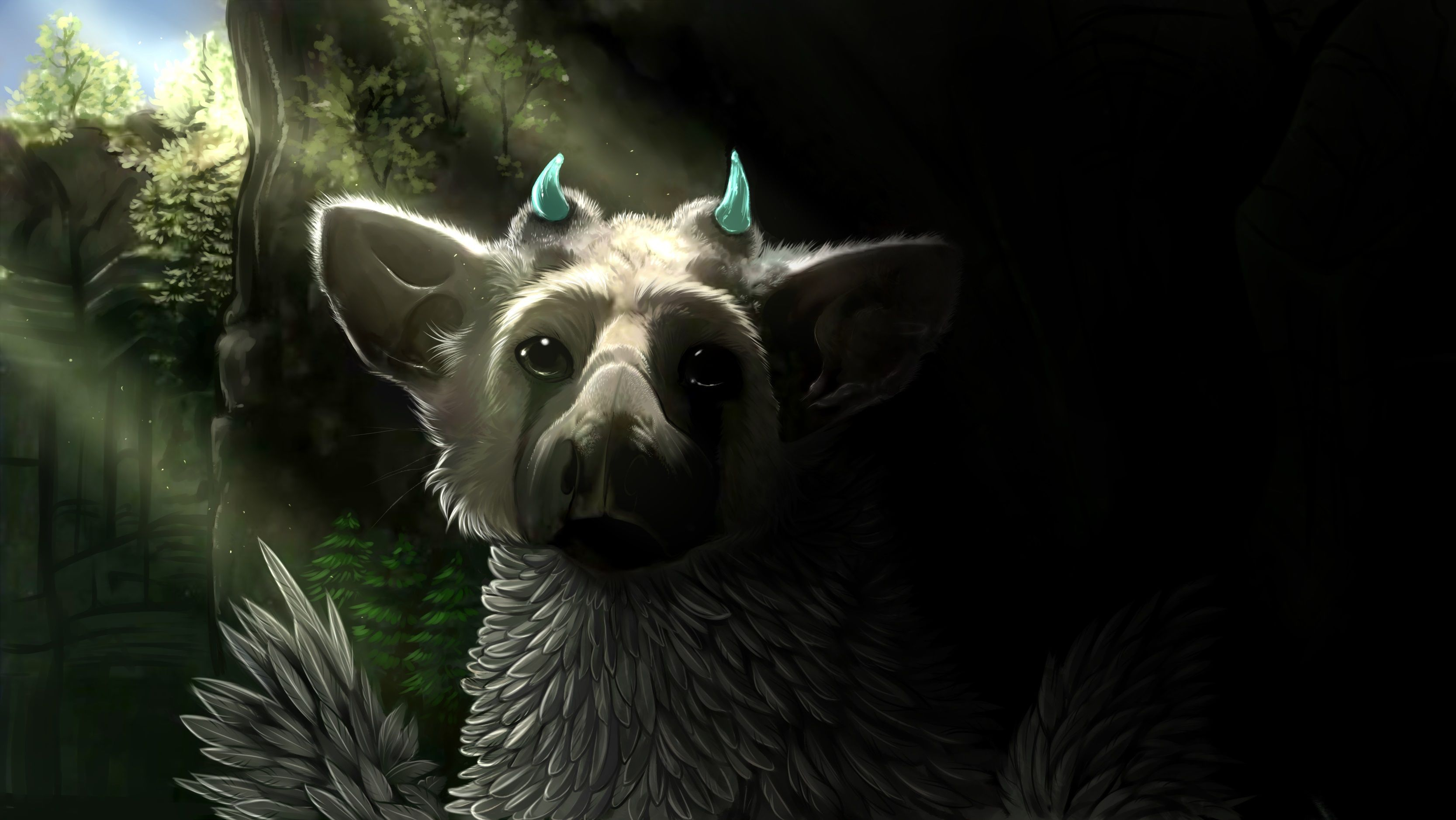 The Last Guardian Trico Wallpapers For Iphone Shadow Of The