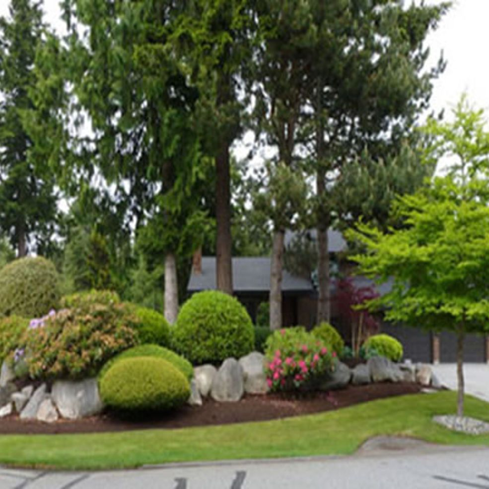 Front Yard Garden Designs | Front yard garden design, Rock ...