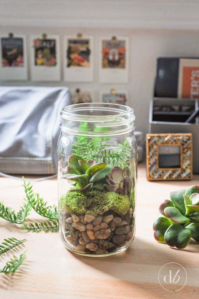 easy mason jar terrariums d co maison truc et bricolage. Black Bedroom Furniture Sets. Home Design Ideas