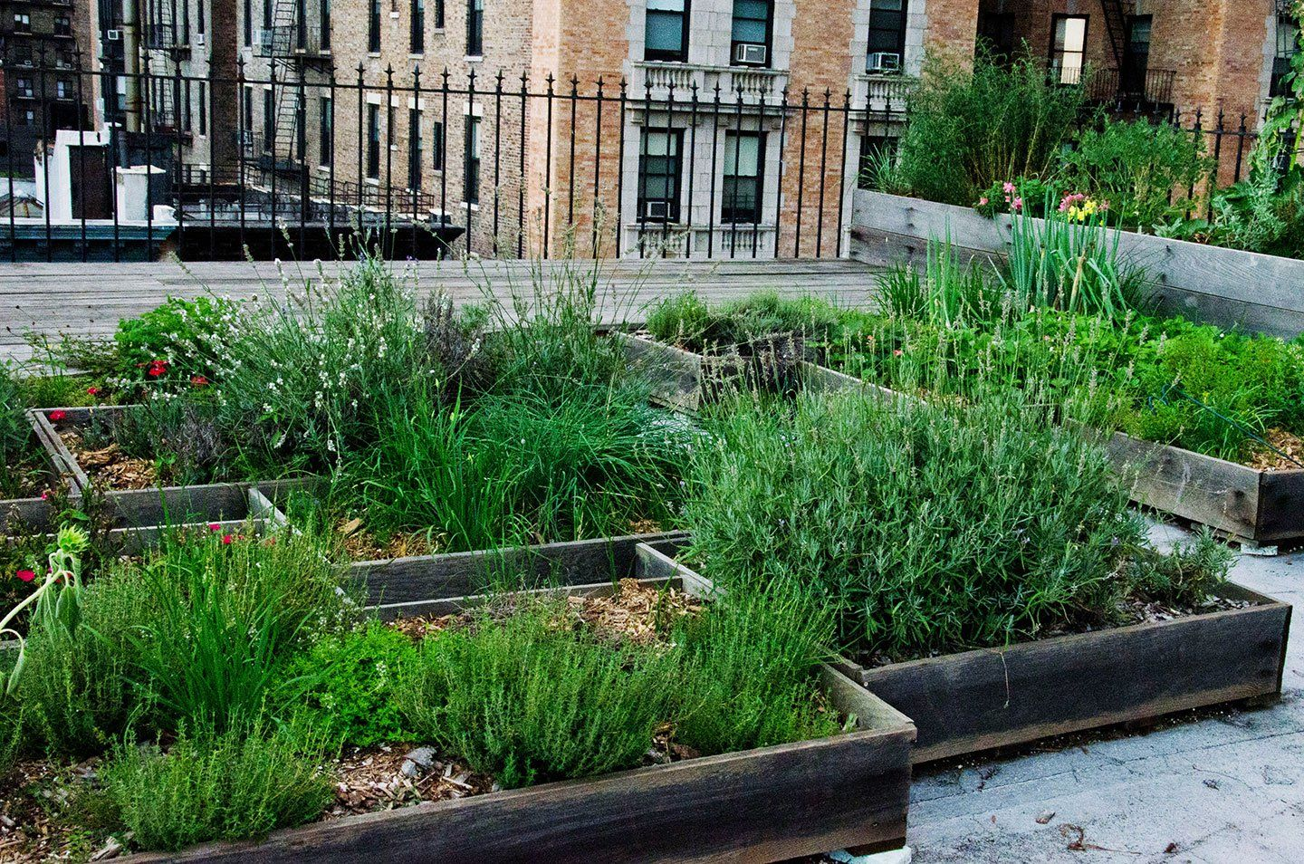 Gardening on Concrete With Raised Beds and Patio