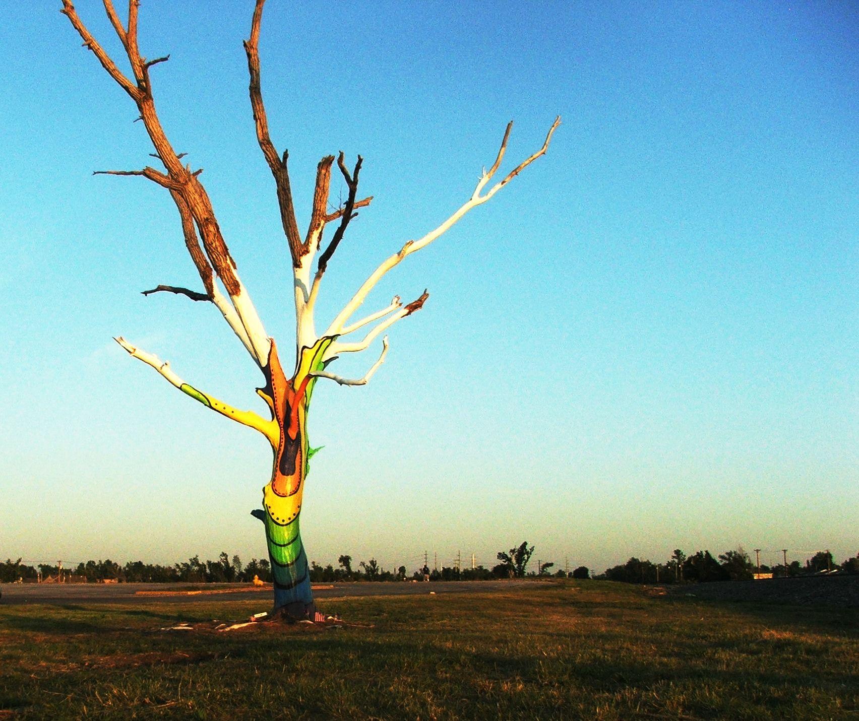 Joplin Tornado Spirit Tree Joplin Tornado Weather Storm Nature