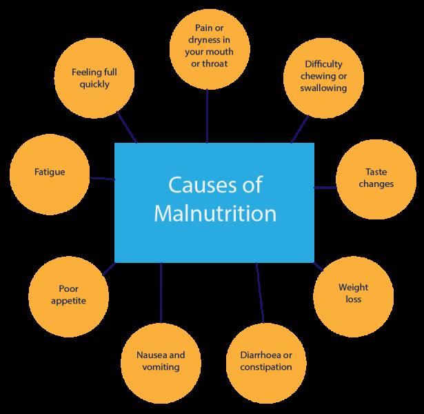 basic causes of malnutrition