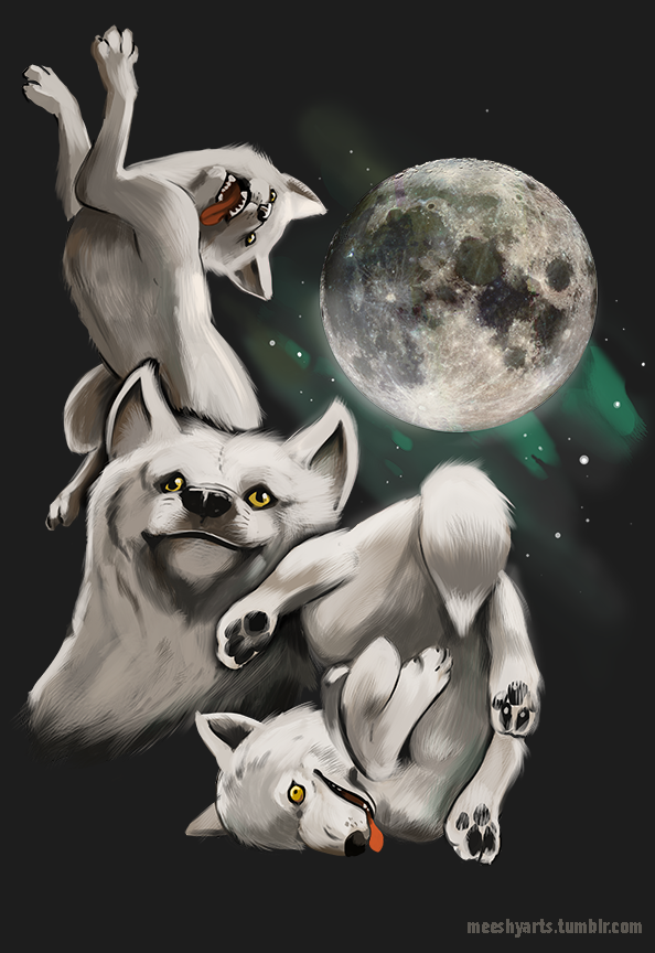 Random Pics To Put A Smile On Your Face Moon Moon Memes Three Wolf Moon Wolf Moon