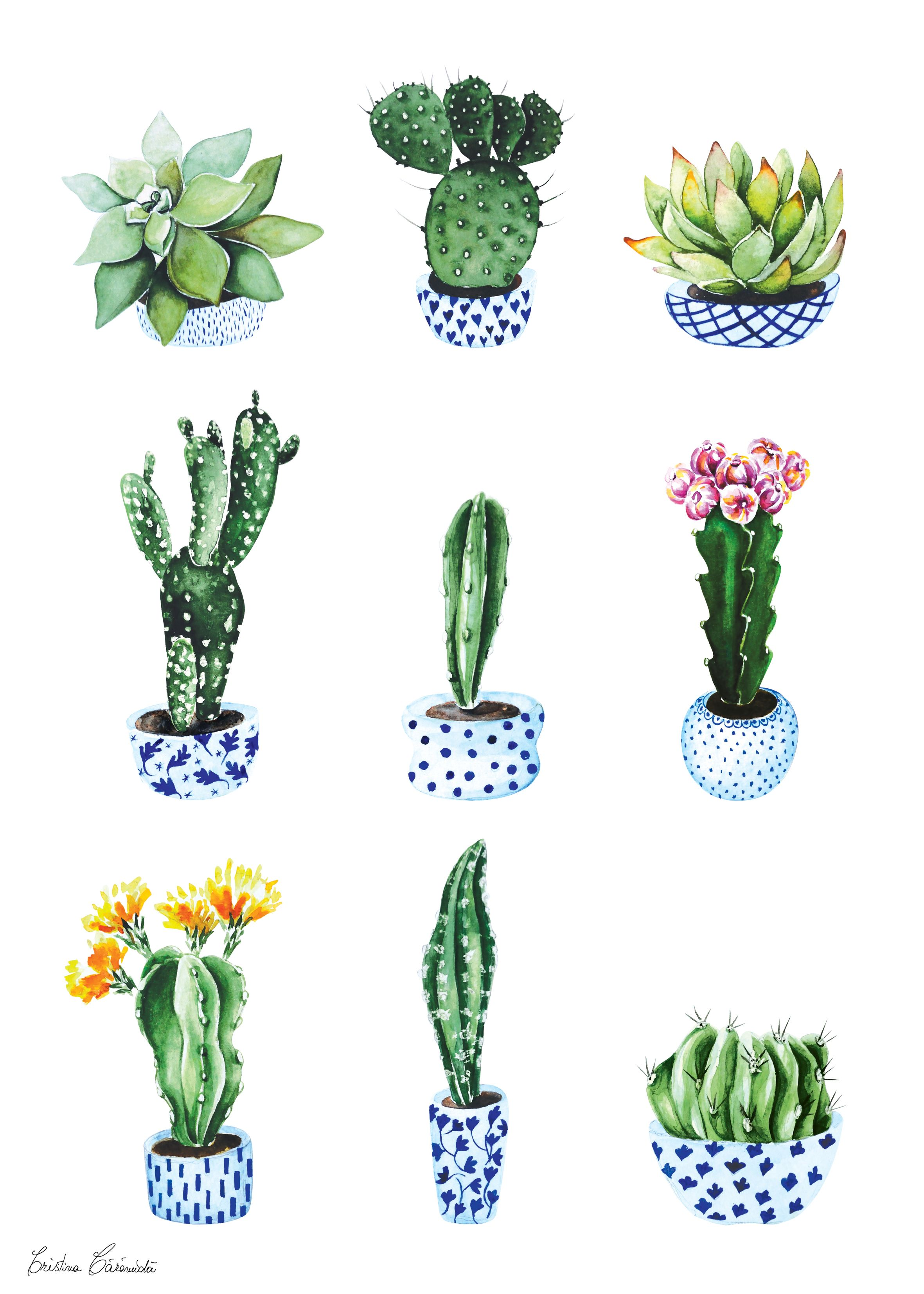 20 Cactus Doodle Tumblr 1000x1000 Pictures And Ideas On Meta Networks