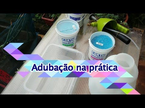 Adubacao De Orquideas Na Pratica Youtube Adubacao Orquidea